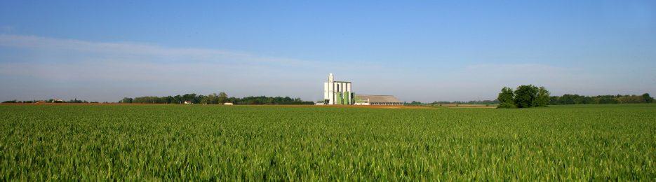 Communication agricole La coopérative est omniprésente dans le système agricole en France et en Europe.