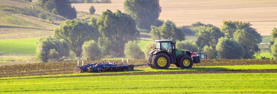agence de communicaction agriculture agricole appaloosa